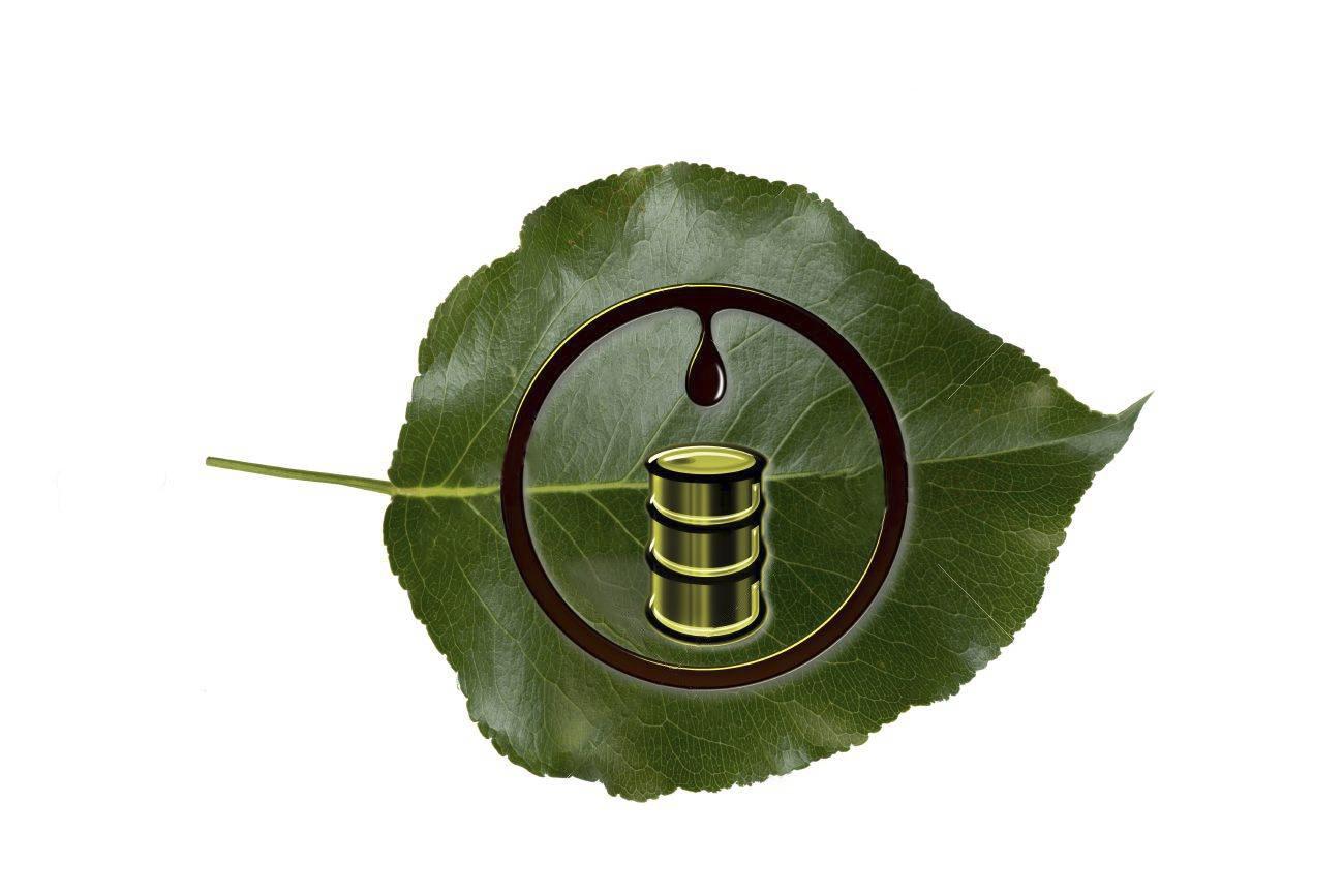 Materiales multifásicos basados en biopolímeros con capacidad de almacenamiento energético para uso en edificación sostenible