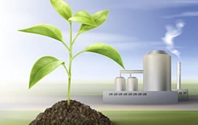 Procesos de biorrefinería alternativos e integración de plataformas químicas y termoquímicas para el fraccionamiento sostenible de biomasa lignocelulósica